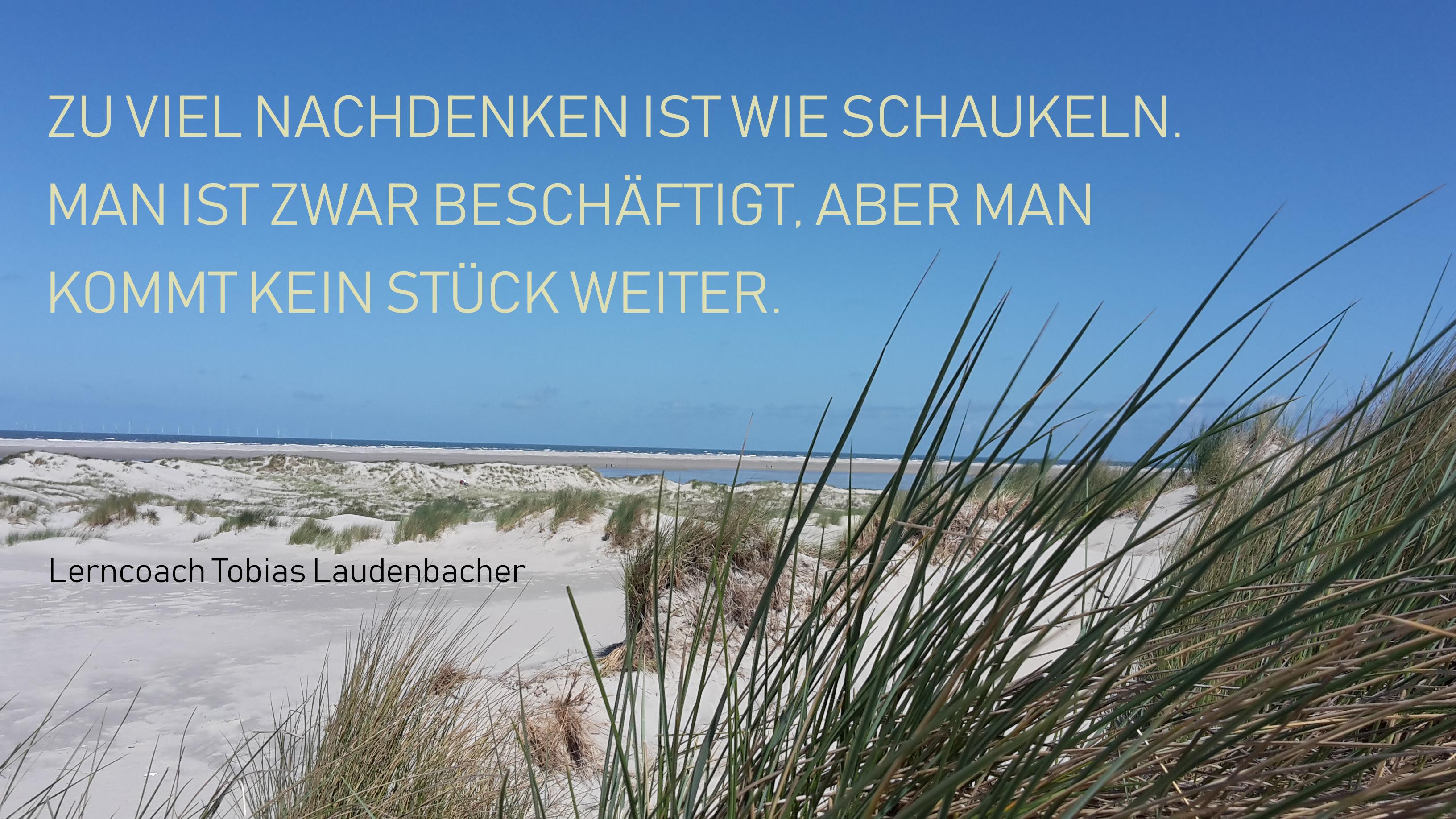 01_Quote_Zu_viel_Nachdenken_ist_wie_Schaukeln